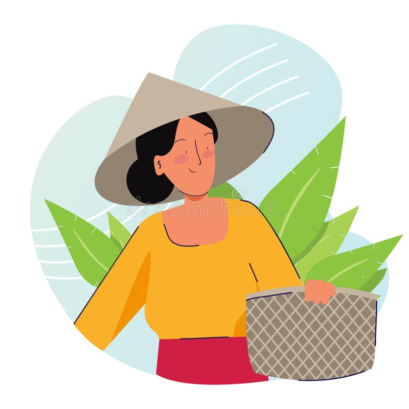 Woman farmer holding basket wearing cap in tobacco or tea leaf plantation harvesting. Traditional farming organic nature royalty free stock photo
