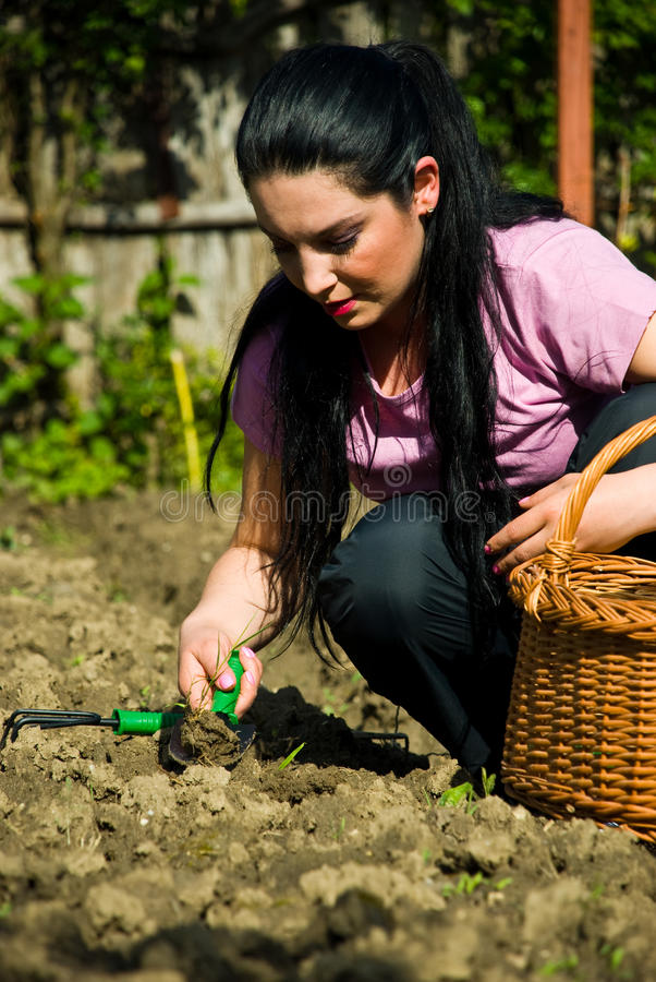Free Woman Farming Stock Images - 14328794