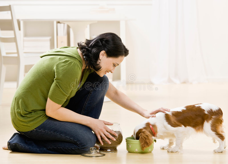 Woman feeding dog stock photo