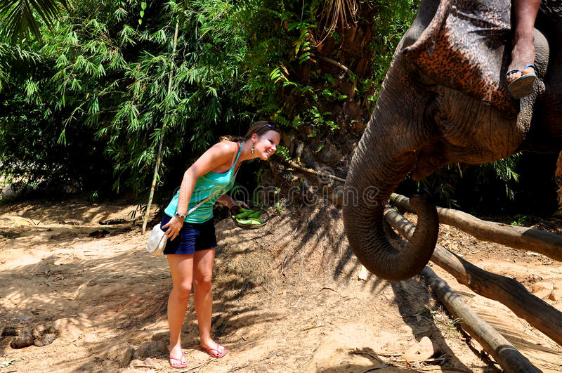 Download Woman Feeding An Elephant Stock Photography - Image: 24021762