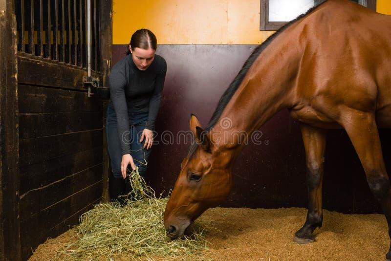 Woman feeding horse stock photo