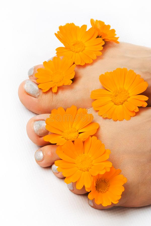 Woman feet and flower royalty free stock photography