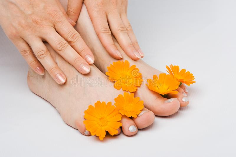 Woman feet and flower stock image