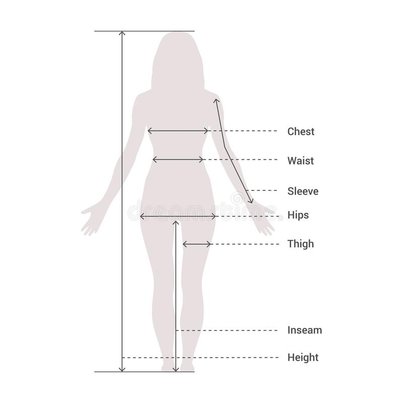 Woman Female Body Measurement Proportions for Clothing Design and Sewing Chart for Fashion Vector illustration vector illustration