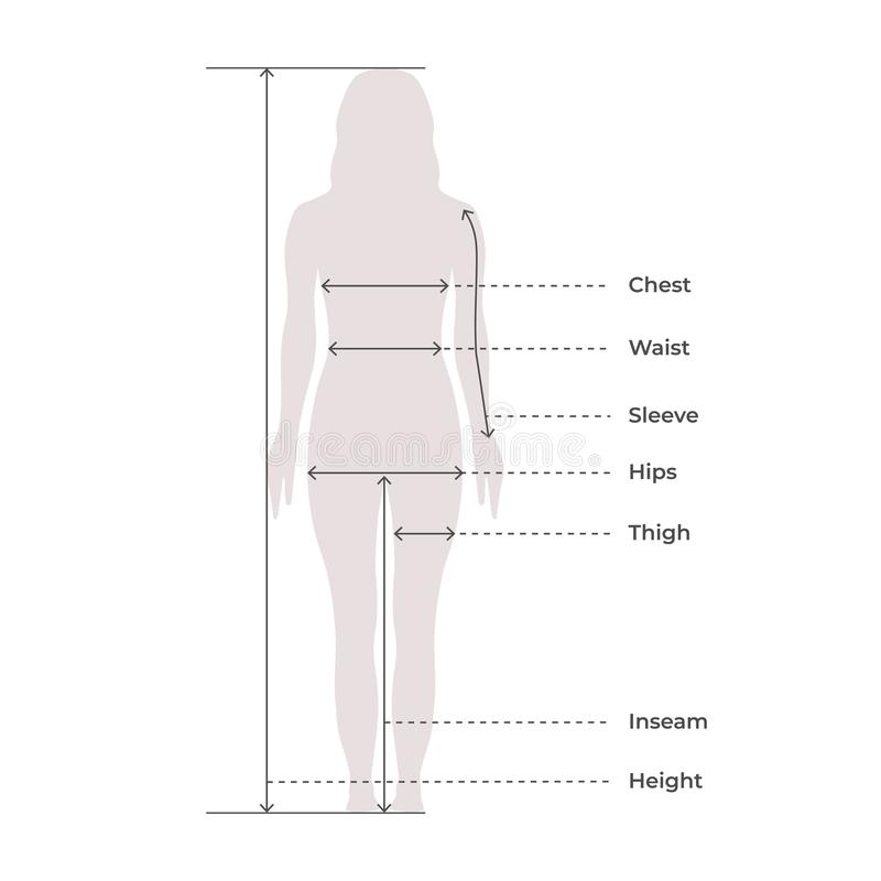 Free Woman Female Body Measurement Proportions For Clothing Design And Sewing Chart For Fashion Vector Illustration Stock Photo - 158799960