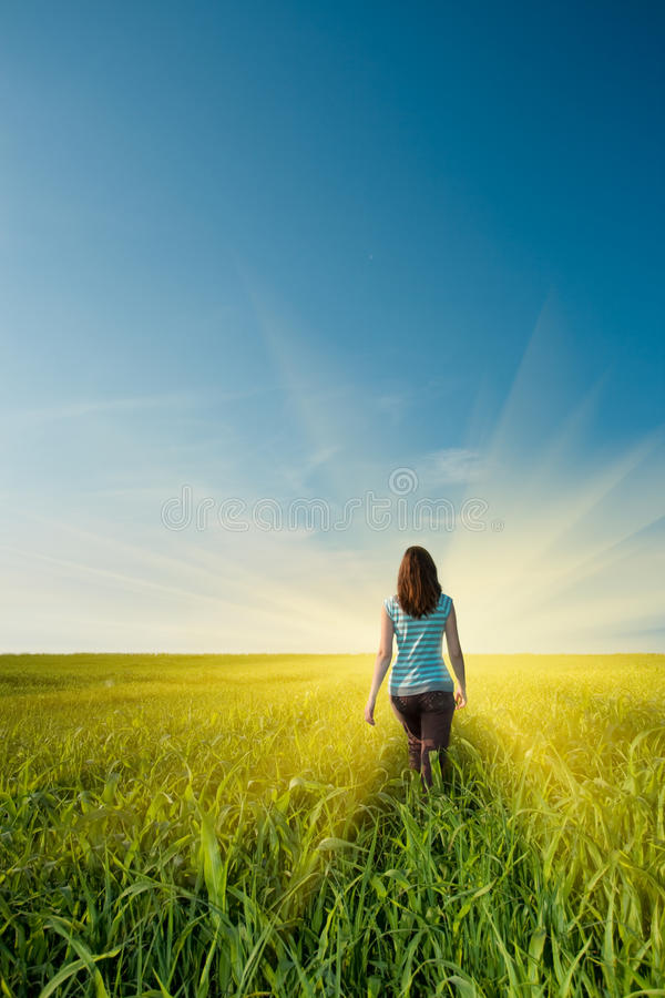 Download Woman on field stock image. Image of countryside, beauty - 10511235