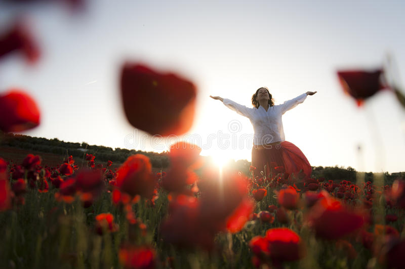 Download Woman in field stock photo. Image of outdoors, girl, happy - 14559616