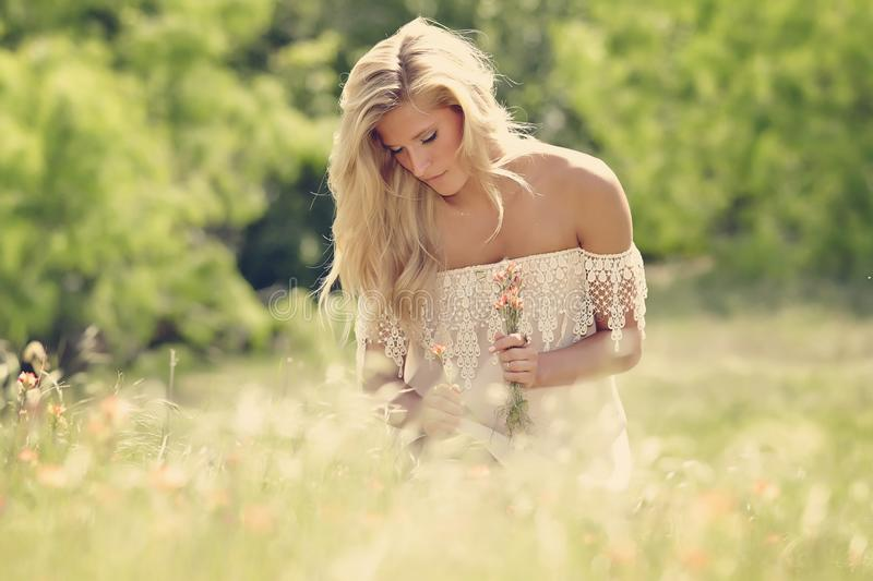 Woman. On field outside, nature royalty free stock images