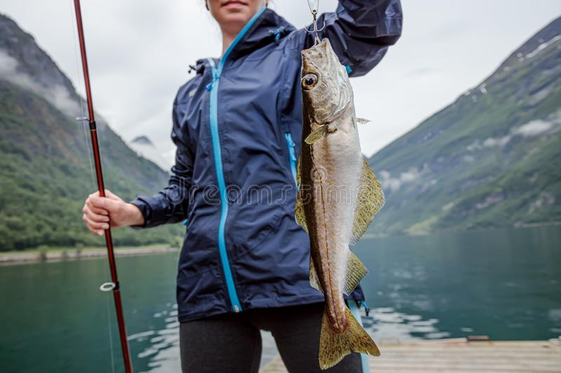 Woman fishing on Fishing rod spinning in Norway royalty free stock photo