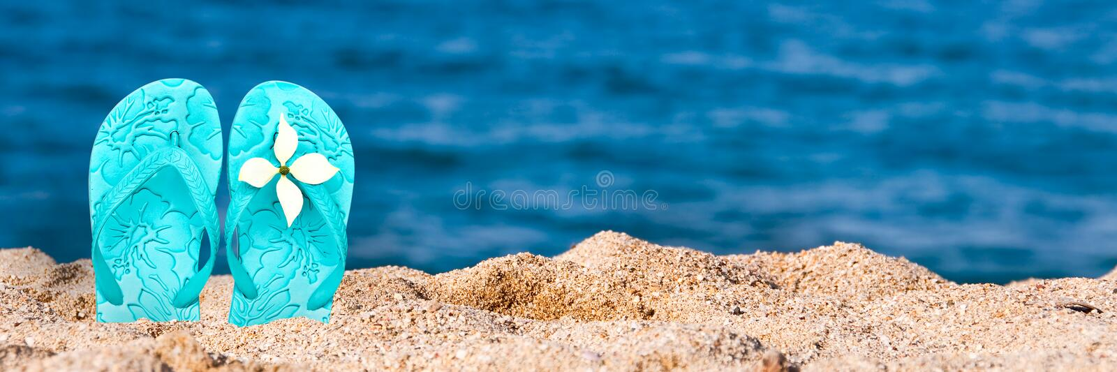 Woman flip flops stuck in the sand on a beach, panoramic summer background royalty free stock image