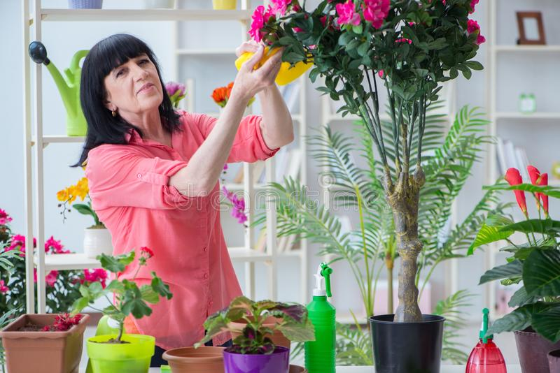 The woman florist working in the flower shop