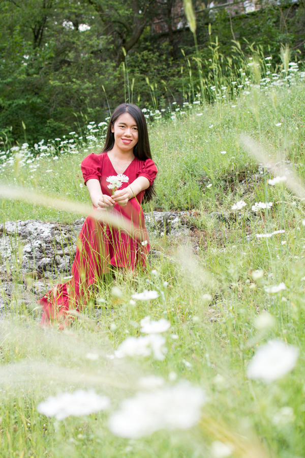 Woman in flower field wearing red dress. Ypung woman in flower field wearing red dress royalty free stock photo