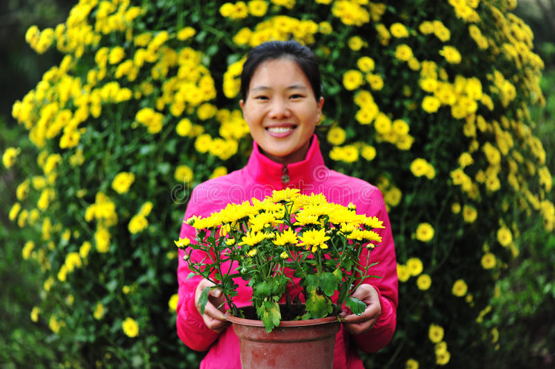 Download Woman in flower garden stock photo. Image of chrysanthemum - 28088304