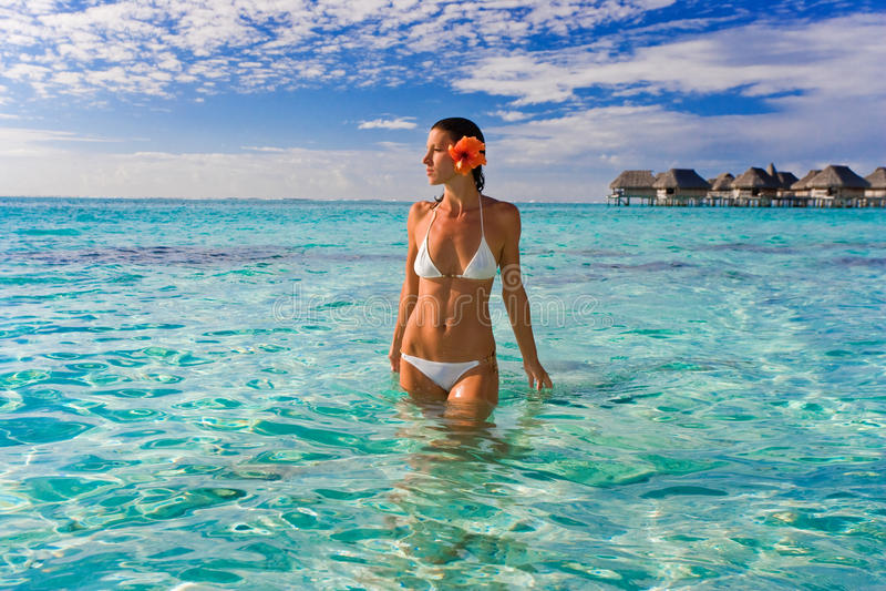 Woman flower tropical resort stock image