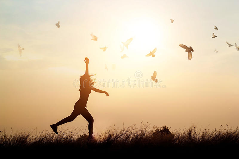 Woman and flying birds enjoying life in nature on sunset stock photography
