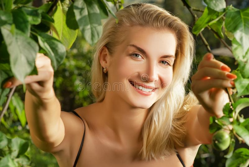 Woman in a forest stock photography