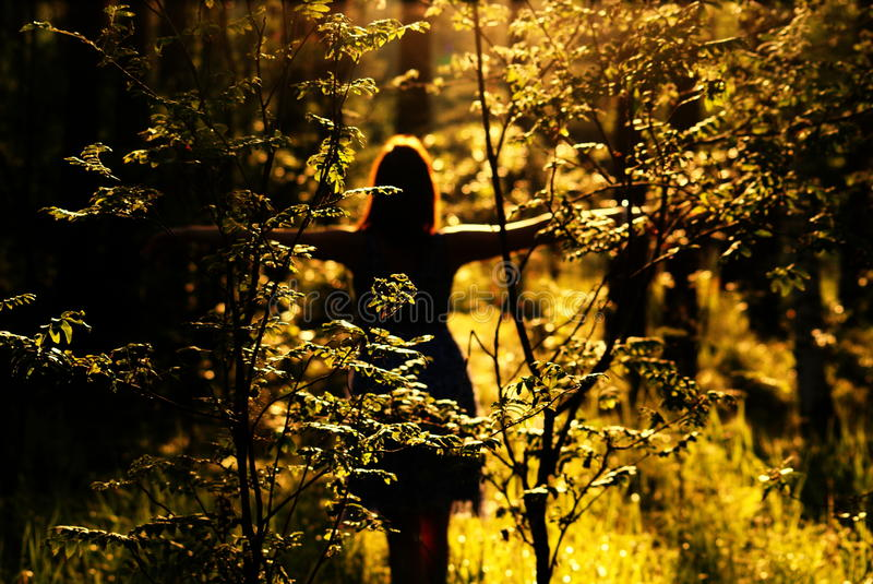 Woman in forest at sunset royalty free stock image