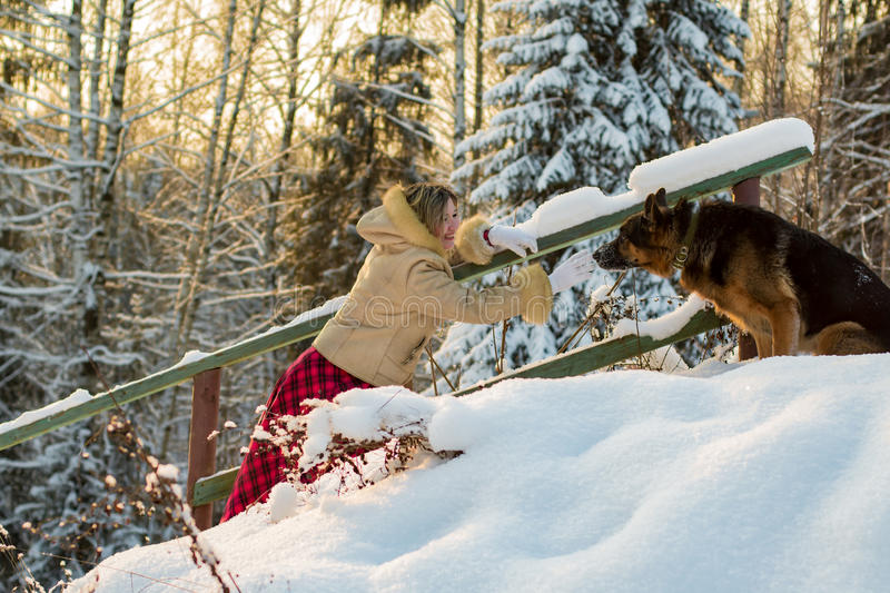 Woman in the forest in a winter day. Woman in the forest in a sunny winter day royalty free stock image