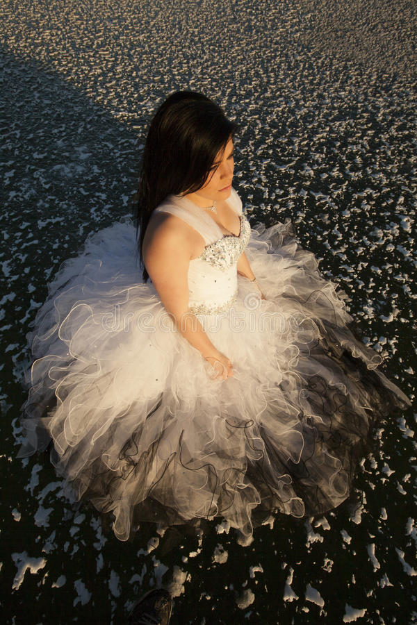 Woman formal dress ice top view look side. A woman standing on a frozen lake in her formal dress looking to the side stock image