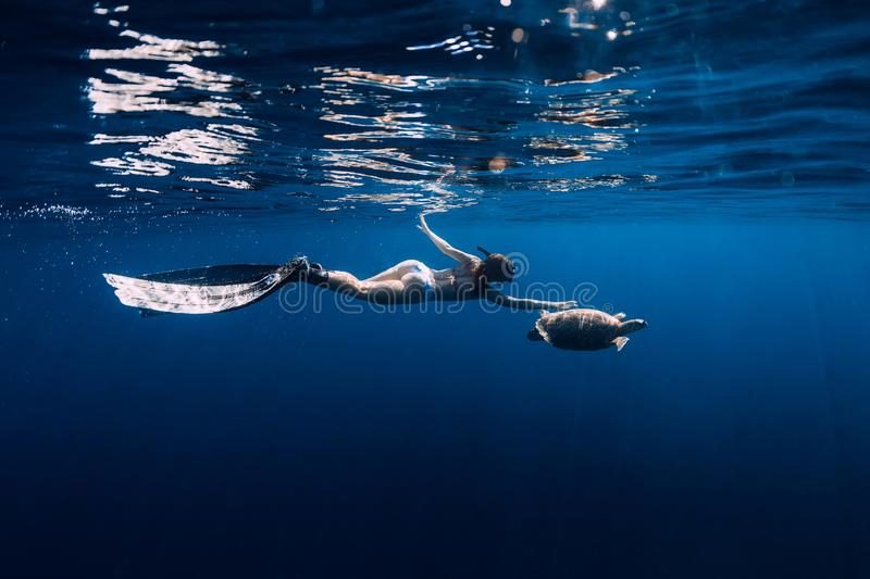 Woman freediver with fins glides underwater with sea turtle in tropical sea. Snorkeling with turtle in ocean royalty free stock photo
