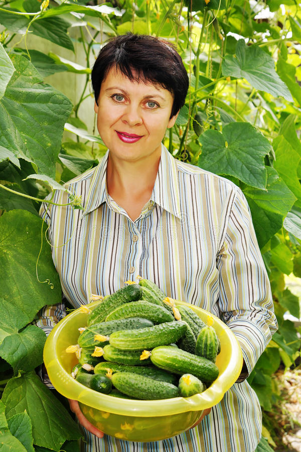 Woman with fresh cucumbers royalty free stock photo