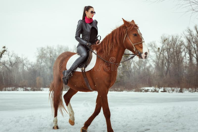 Woman galloping on horseback. Woman galloping on a horse on a snowy field, around the forest stock photo