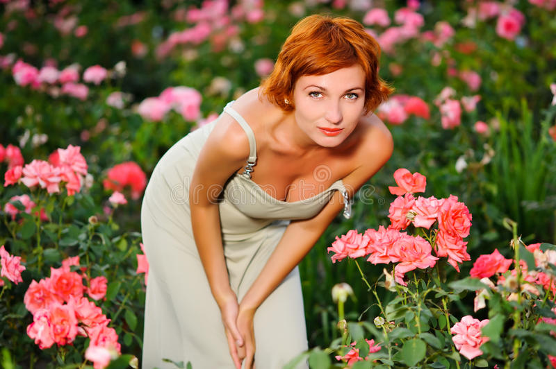 Download Woman in a garden of roses stock image. Image of gardening - 20781511