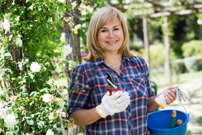 Woman garden tool. Smiling blond mature woman holding horticultural tools in garden on sunny day stock image