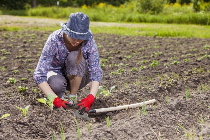 Woman at garden royalty free stock photos