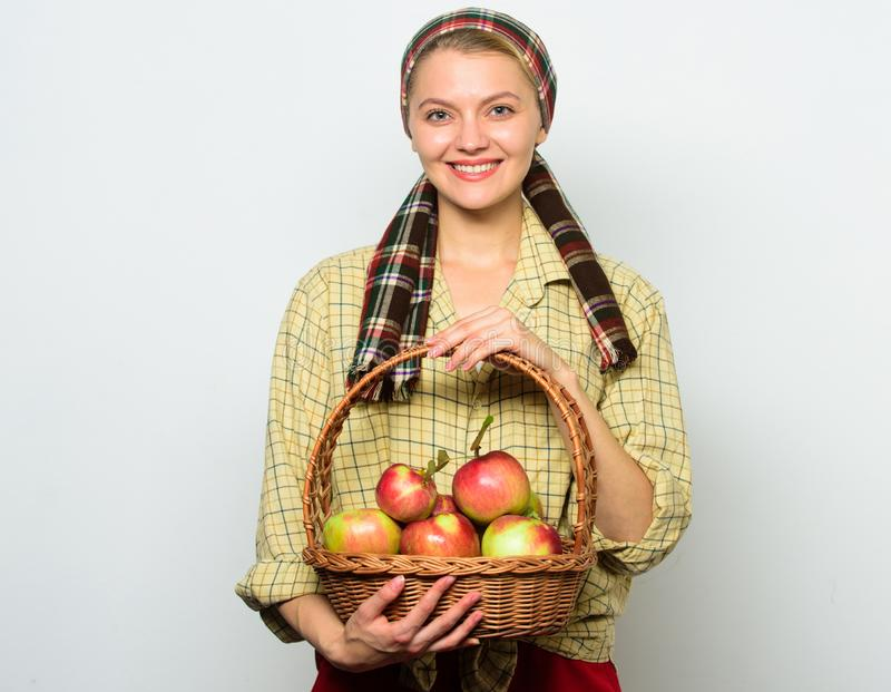 Woman gardener rustic style hold basket with apples harvest on light background. Lady farmer proud of her harvest. Apple. Crops and gardening concept. Woman stock photos