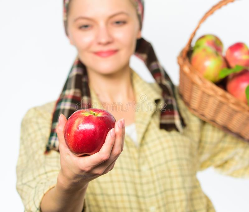 Woman gardener rustic style offer you apple on white background selective focus. Try this ripe juicy apple. Woman. Sincere villager carry basket with natural ts royalty free stock images