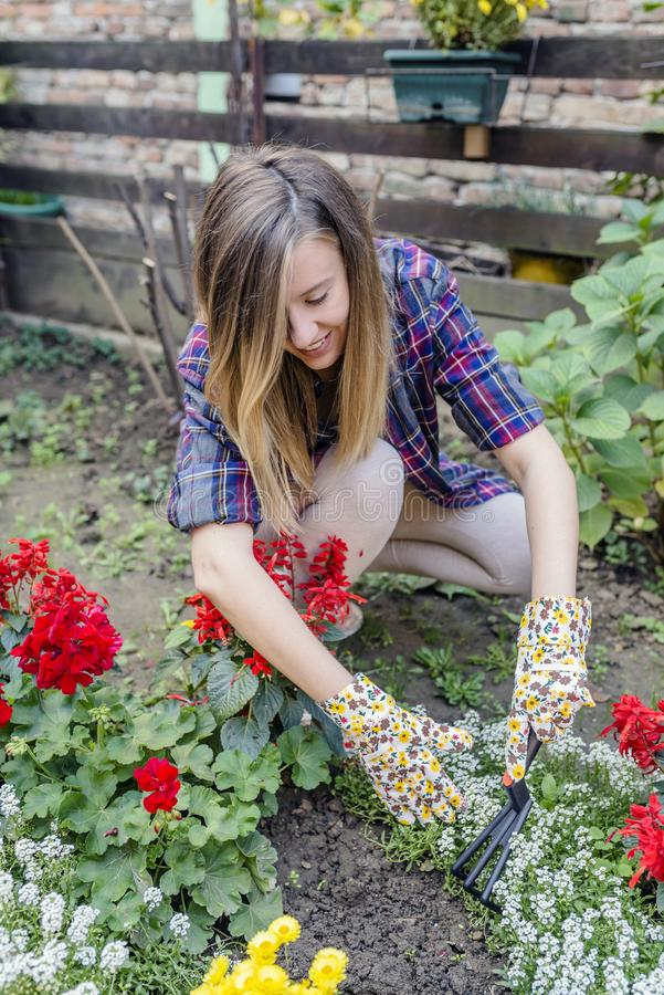Woman Gardner Taking Care Of Plants stock photography