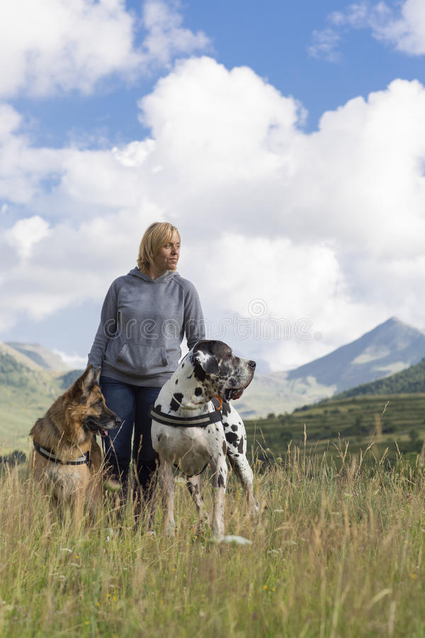 Woman, german sheperd and great dane stock photography