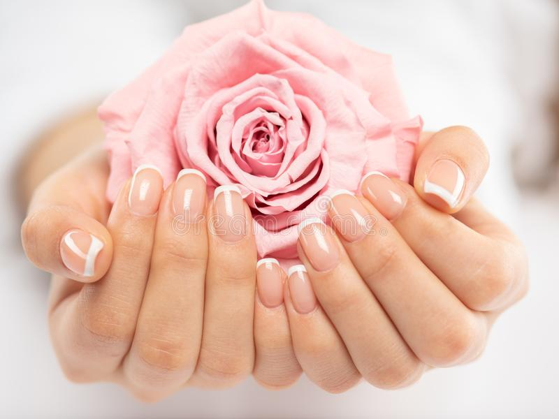Woman gets manicure procedure in a spa salon. Beautiful female hands royalty free stock photos