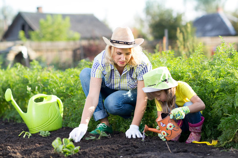 Woman and girl, mother and daughter, gardening royalty free stock photography