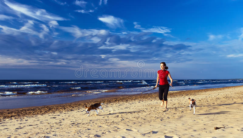 Woman with gods. Woman with two beagles on a beach.The polarizing filter is used stock photos
