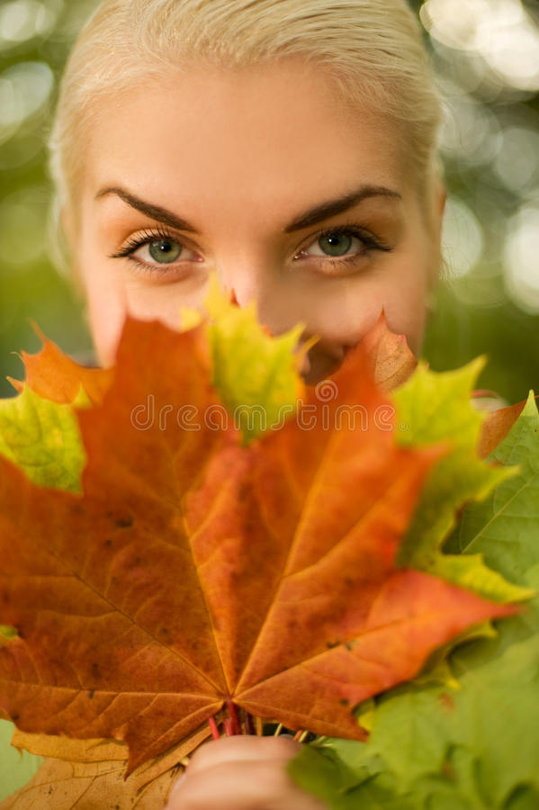 Woman with golden autumn leaf stock images
