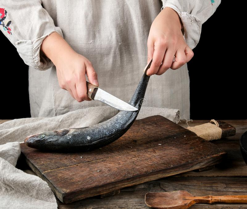 woman in gray linen clothes cleans the fish sea bass stock images