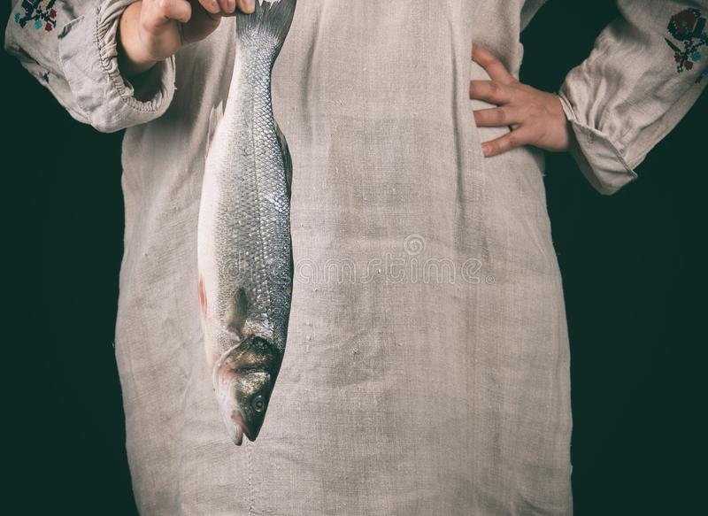 woman in gray linen clothes holding a fresh sea bass fish stock image