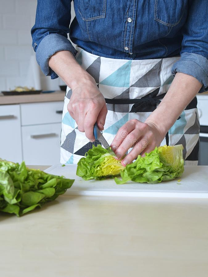Woman in green kitchen royalty free stock image