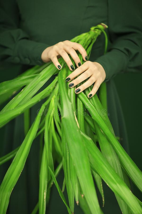 Woman in green 50`s dress hands holding some tropical leaves royalty free stock photos