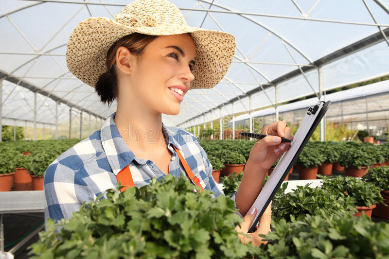 Woman in the greenhouse to take notes on the clipboard. Woman look up in the greenhouse to take notes on the clipboard stock photography