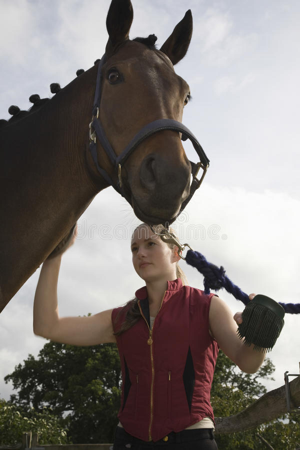 Woman Grooming Horse. Young woman grooming horse outdoors royalty free stock image