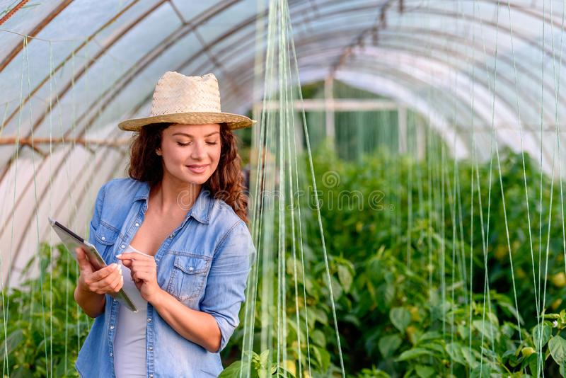 Entrepreneur woman in her greenhouse holding tablet. Young businesswoman. stock photo