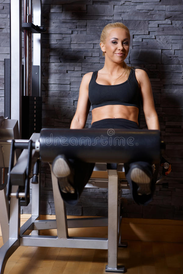 Download Woman at the gym stock photo. Image of happy, fitness - 14855442