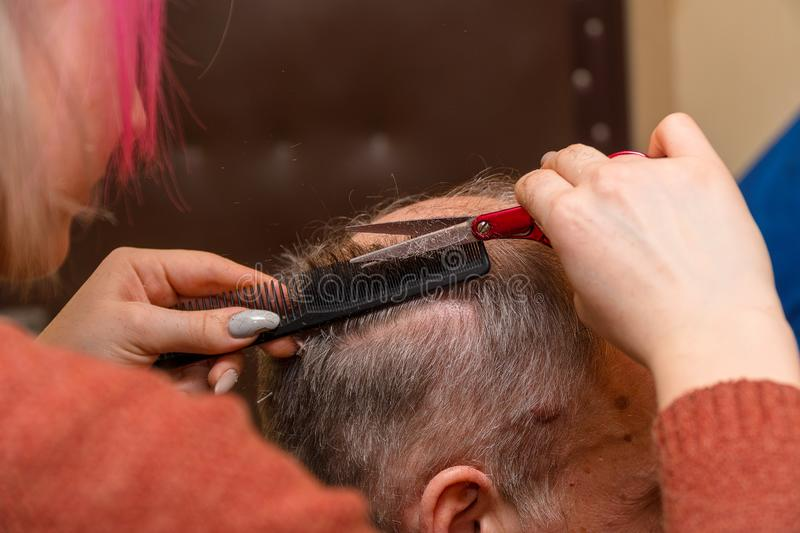 Woman hairdresser cuts a man with a receding hairline with scissors stock photography