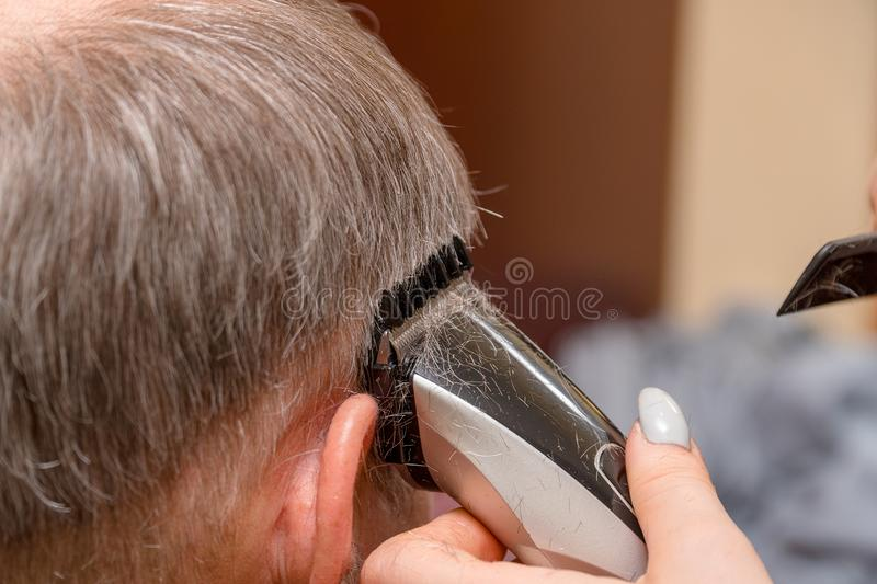 Woman Hairdresser cuts man`s hair with electric clipper trimmer royalty free stock images