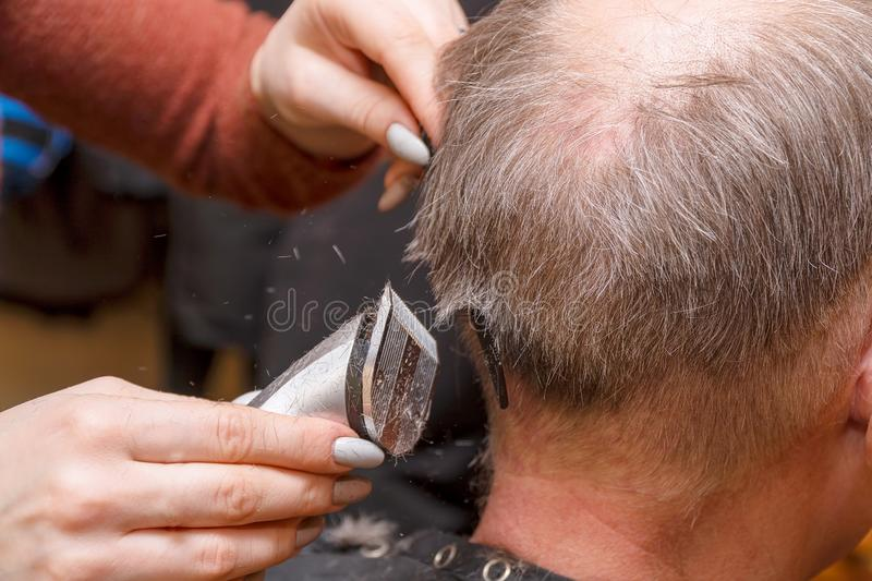 Woman Hairdresser cuts man`s hair with electric clipper trimmer royalty free stock photo