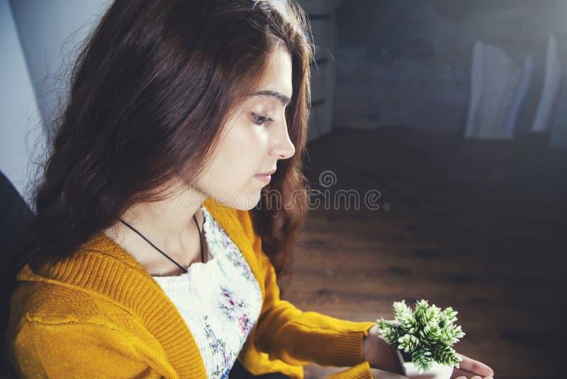 Woman hand artificial plant stock photos