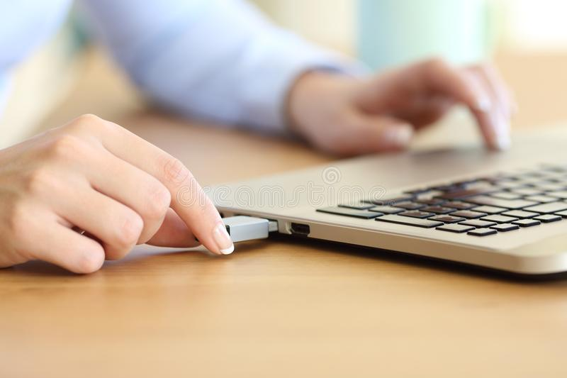 Woman hand connecting a pendrive in a laptop stock image